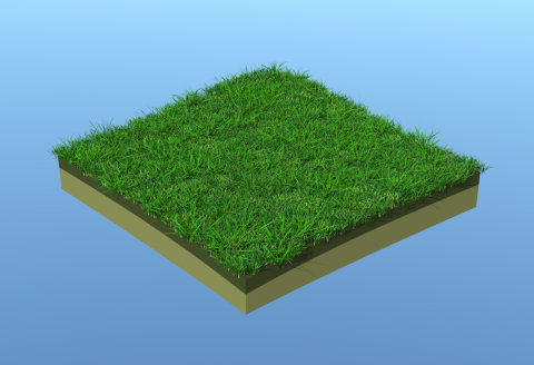Definitions for grass generation and scattering on the surface.