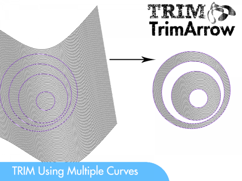 A 2D multiple curves Trimming tool
