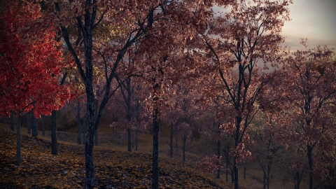 REAL TREES is a realistic tree model library for architectural visualization in Rhino 5 with v-ray. The library includes 60 models in 15 tree species.
