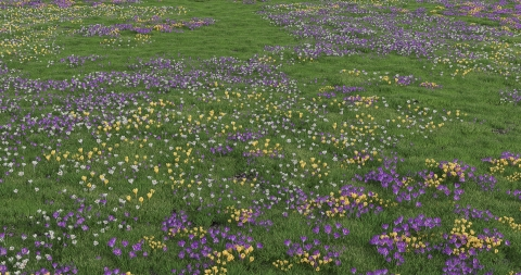 REAL FLOWER is a realistic garden flower 3D model library for architectural visualization in Rhino 5 and v-ray.