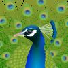 Algorithmic jewelry modeling tools for Grasshopper.