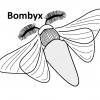 The Bombyx is a Grasshopper plugin for Life Cycle Assessment of buildings in early design stages.