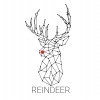 Reindeer is a parametric toolkit customized for detailing fabrication-ready timber structures.