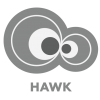 Hawk analyzes view and effects on the agents.
